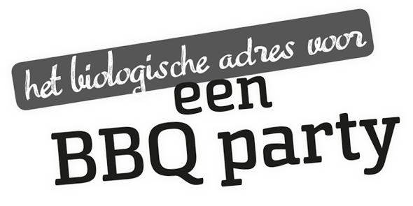 bbq-party-logo